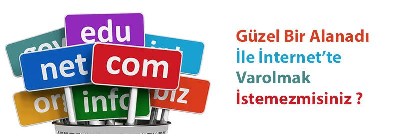 domain, alan adı